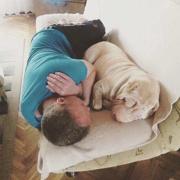 «Папа совсем не хотел собаку, но сейчас иногда я застаю их вот так».
