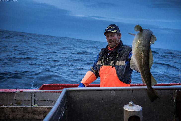 Как ловят рыбу в Норвегии (27 фото)