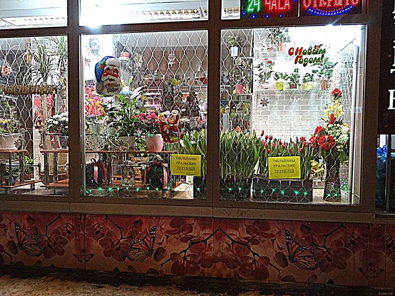 тюльпаны уральские