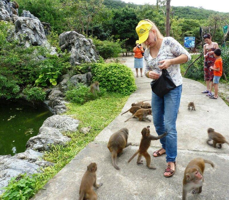 Голодных обезьян на острове больше, чем людей. Вьетнам - 2016. Фотографии Людмилы Осиповой 037.jpg