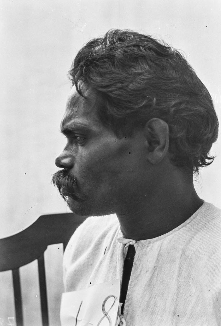 519. Сингалец