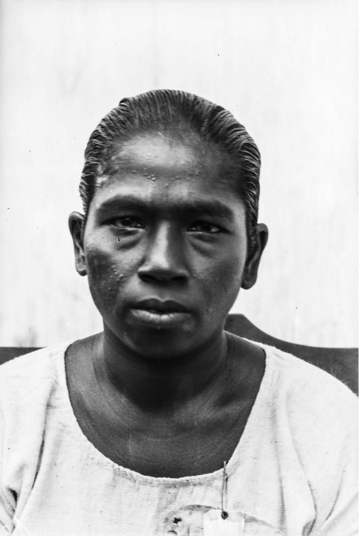527. Горная сингалка из окрестностей Курунегала