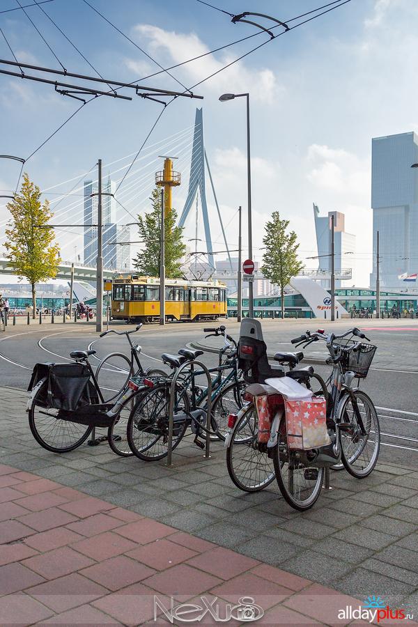 Три дня, три страны, три города #14 | Cтрана #3 - Нидерланды, город Роттердам #2, дорога назад. Конец маршрута.