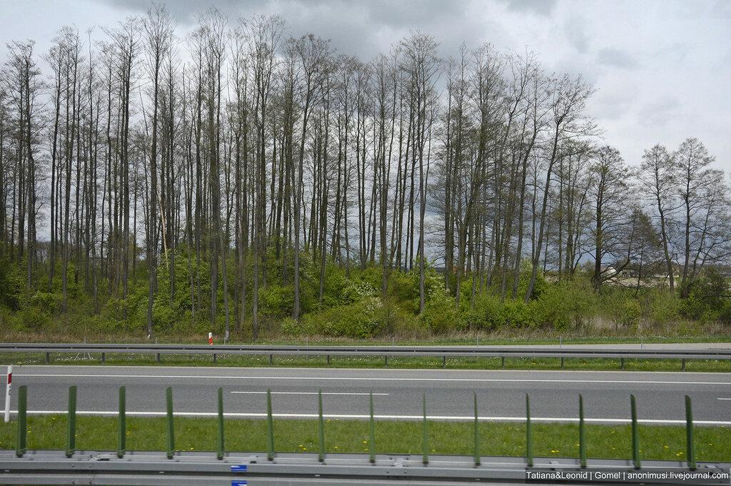 Весна на дорогах Польши