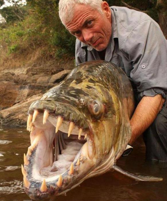 Рыба-монстр. 3.