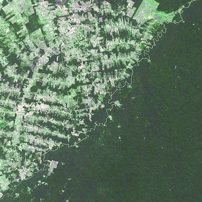 12. Бразилия и Боливия Река, разделяющая две страны, проводит чёткую границу между тропическими леса