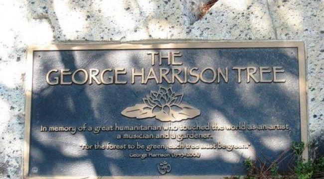 © canyon-news  В2004 году впамять огитаристе известной группы «Битлз» Джордже Харрисоне на