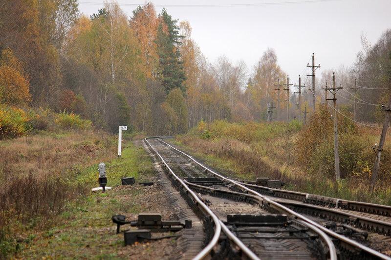 Вострочные стрелки станции Гарнея, вид на Себеж, крупно. Столб 625 км