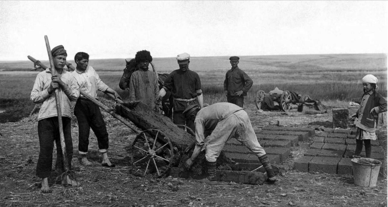 1923. Троицкий округ. Заготовка самана переселенцами.