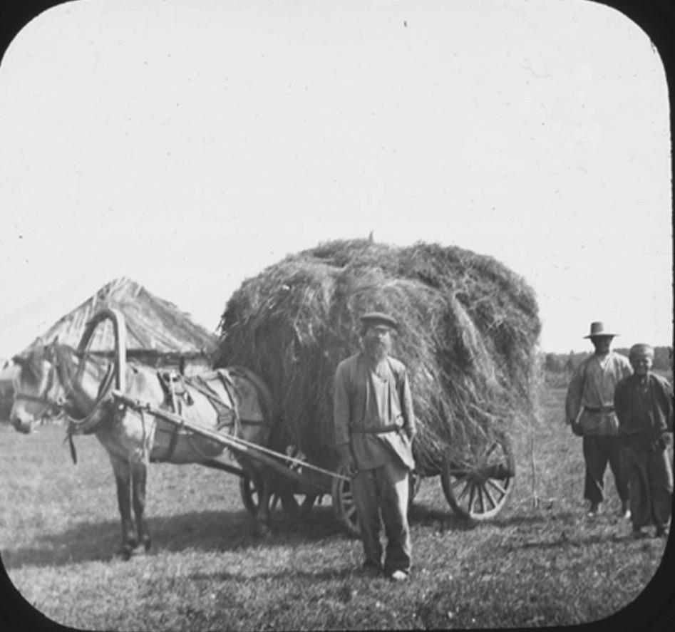 15. Cельскохозяйственный рабочий стоит перед телегой с сеном