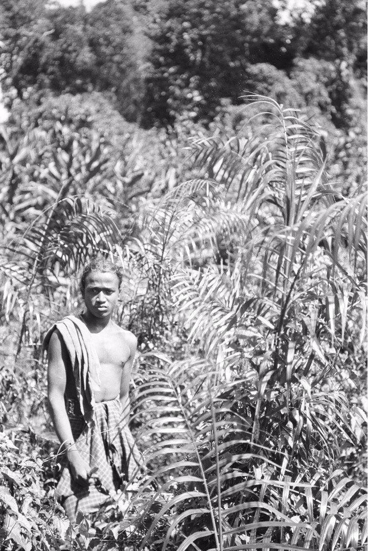 71. Мужчина в поле в окрестности Моладении
