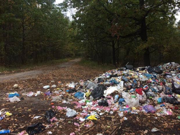 Садовый не спит: Жителям Волыни тайно подбросили львовское мусора (фотофакт)