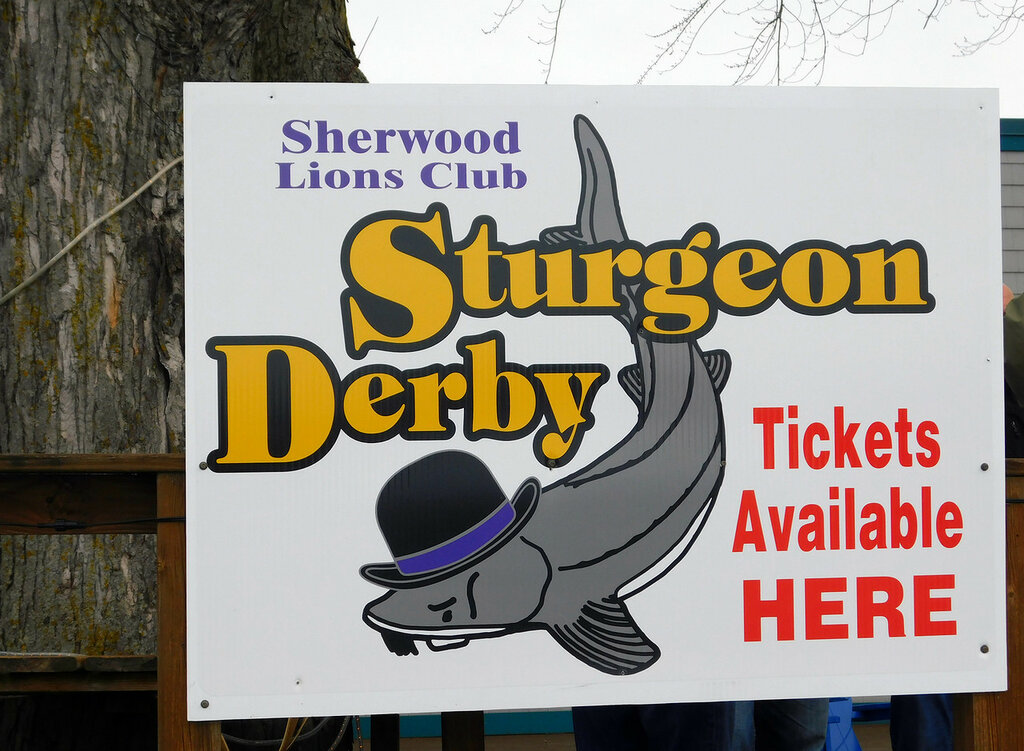 Sturgeon Spearing