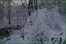 http://img-fotki.yandex.ru/get/194549/15842935.41d/0_f1856_dce1d681_orig.jpg
