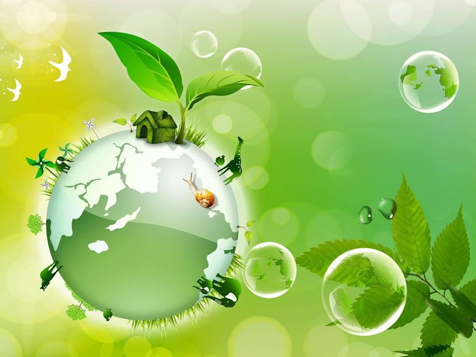 Сегодня — Всемирный день охраны окружающей среды
