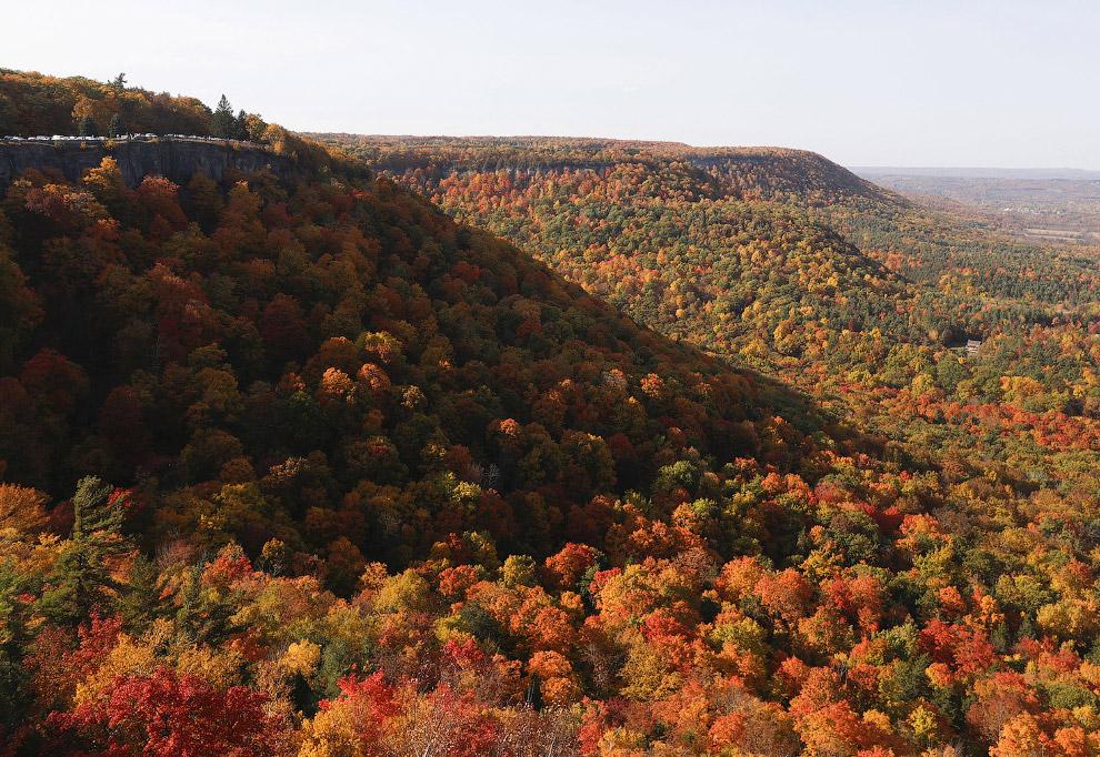 18. Осень – время сбора урожая. (Фото Seth Perlman):