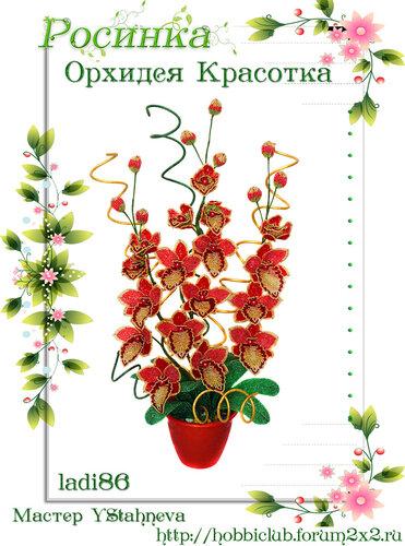 """Галерея работ творческой мастерской """"Орхидея Красотка"""" 0_12ea28_dce35b45_L"""