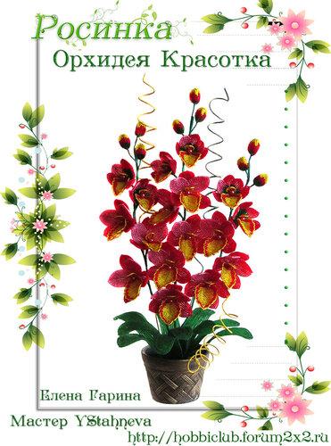 """Галерея работ творческой мастерской """"Орхидея Красотка"""" 0_12ea2b_1d91b7df_L"""