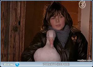 Спасите рождественского гуся / Rettet die Weihnachtsgans (2006/TVRip)