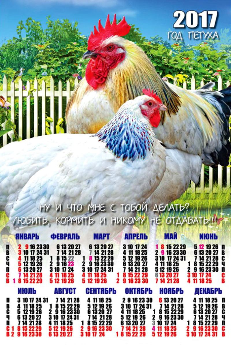 Прикольный календарь на 2017 год картинки