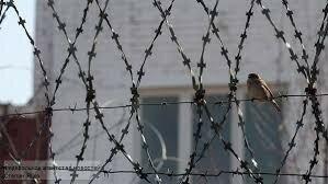 Врач-насильник из Бельц приговорён к тюрьме