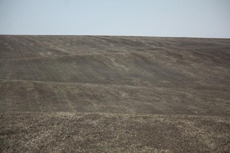 92. Серые лесные почвы. Зарайский район, Московская область.JPG