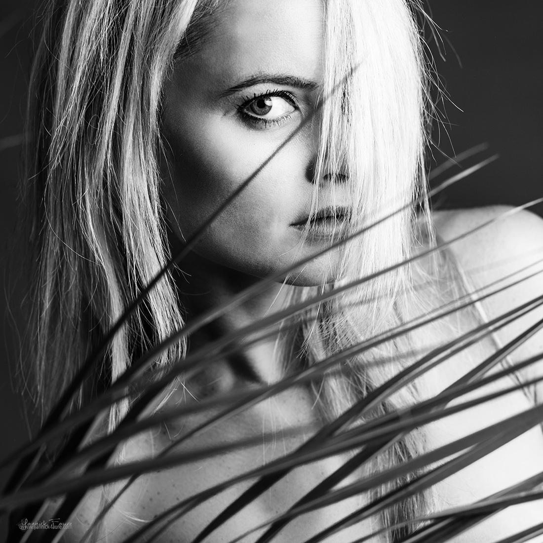Пальма / Фотограф  Yannick Faure