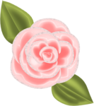 SSS_Roses_Element-21.png