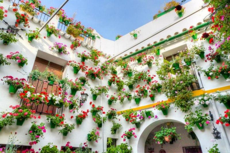 В испанском городе Кордоба ежегодно устраивают настоящий праздник, воспевающий весну,— флористическ