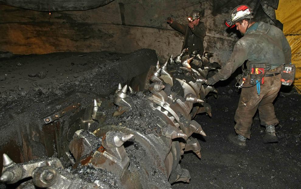 18. Угольная шахта в провинции Пенджаб, Пакистан, 29 апреля 2014. Ослы делают около 20 «рейсов»