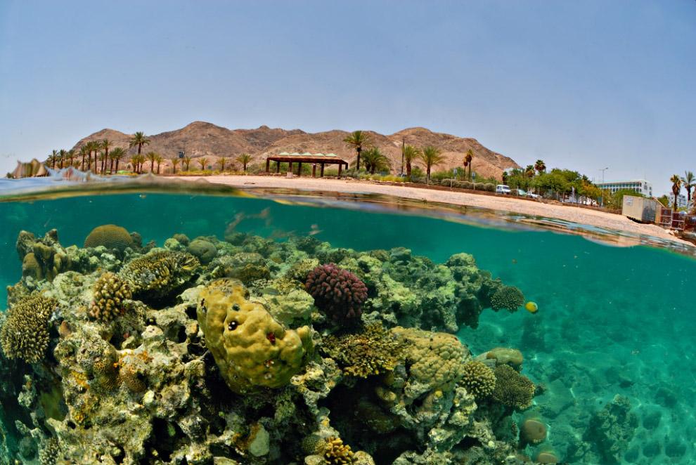7. Нувейба, Египет. Нувейба расположилась на востоке Синайского полуострова, в 170 километрах о