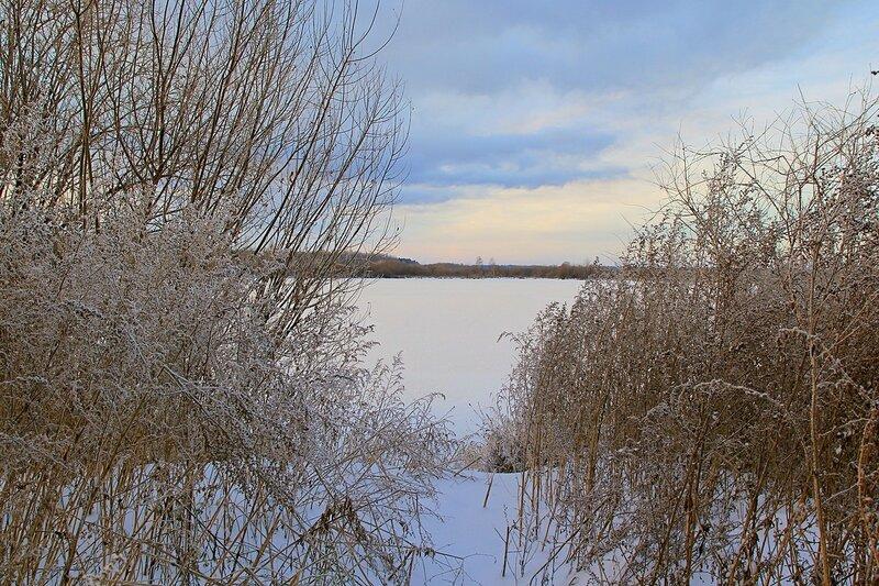 Зимний пейзаж озера Жуково (Кирово-Чепецк): покрытая льдом гладь озера и торчащий из снега сухостой