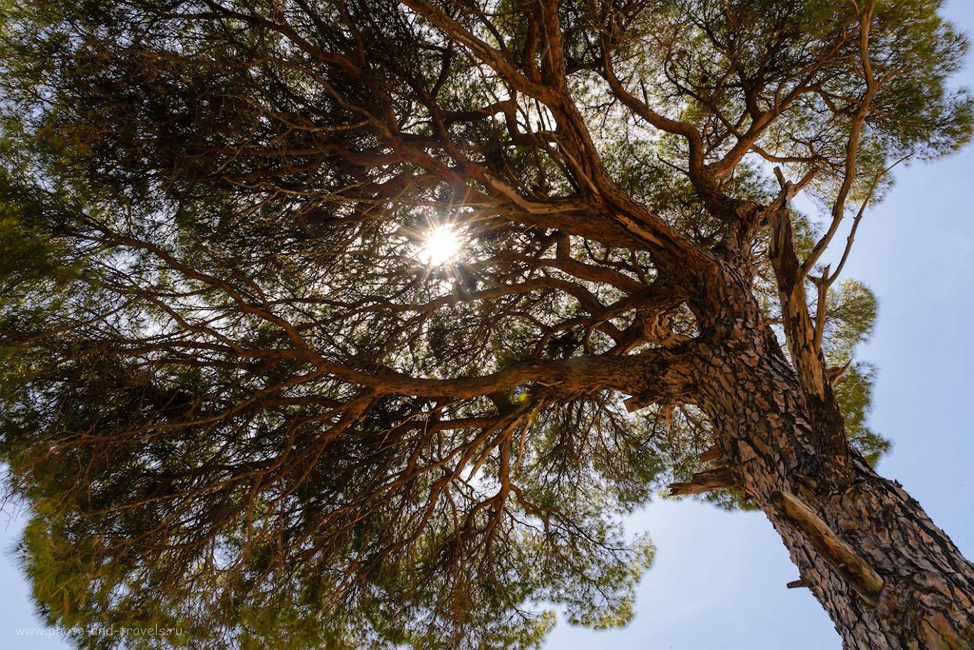 Фотография 33. Горячее солнце Турции. 1/100, +1.33, 22.0, 1600, 24.