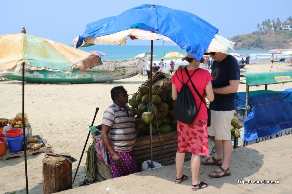 Зеленые кокосы для утоления жажды