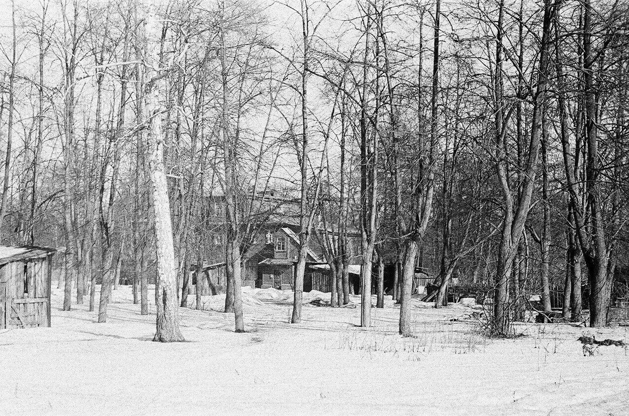 1973. Дом №5 по 6-му Лучевому. Со стороны 5-го Лучевого