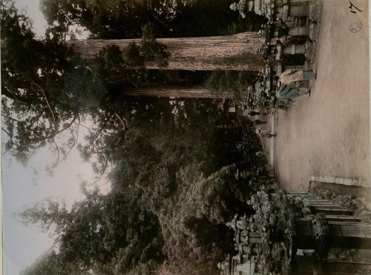 Нара. Парк