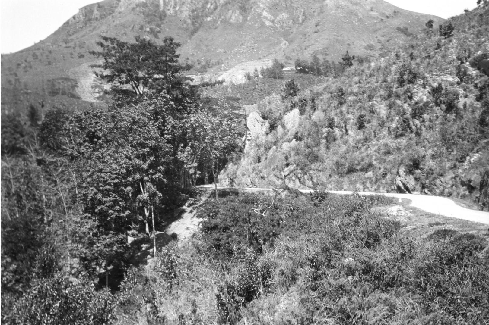 198. Вид на дорогу в Пассару. Снимок сделан Эгоном во время путешествия из Бибилы в Бадуллу