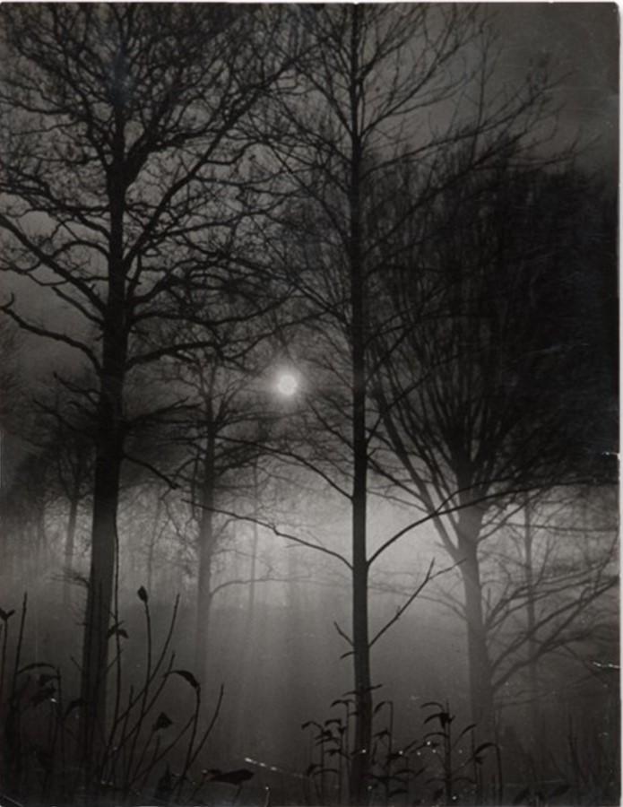 1931. Ночные фотографии