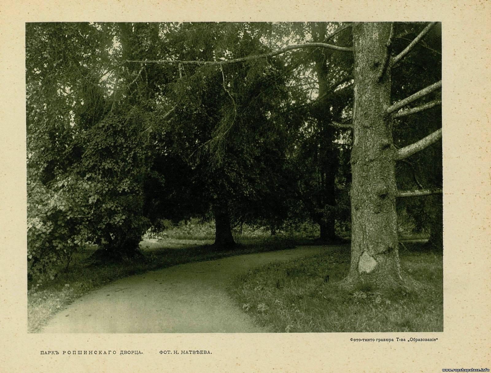 В Ропшинском парке
