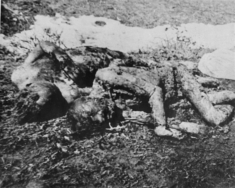Executed_prisoners_in_Jasenovac.jpg