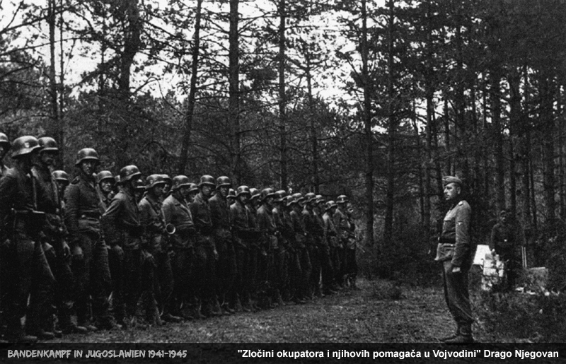 Training of the SS Volunteer Division Prinz Eugen in the Banat.jpg