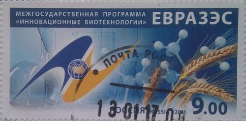 2011 евразес 9