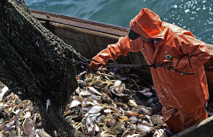 Ямальские рыболовы  установили рекорд, добыв загод неменее  9 тыс.  тонн рыбы