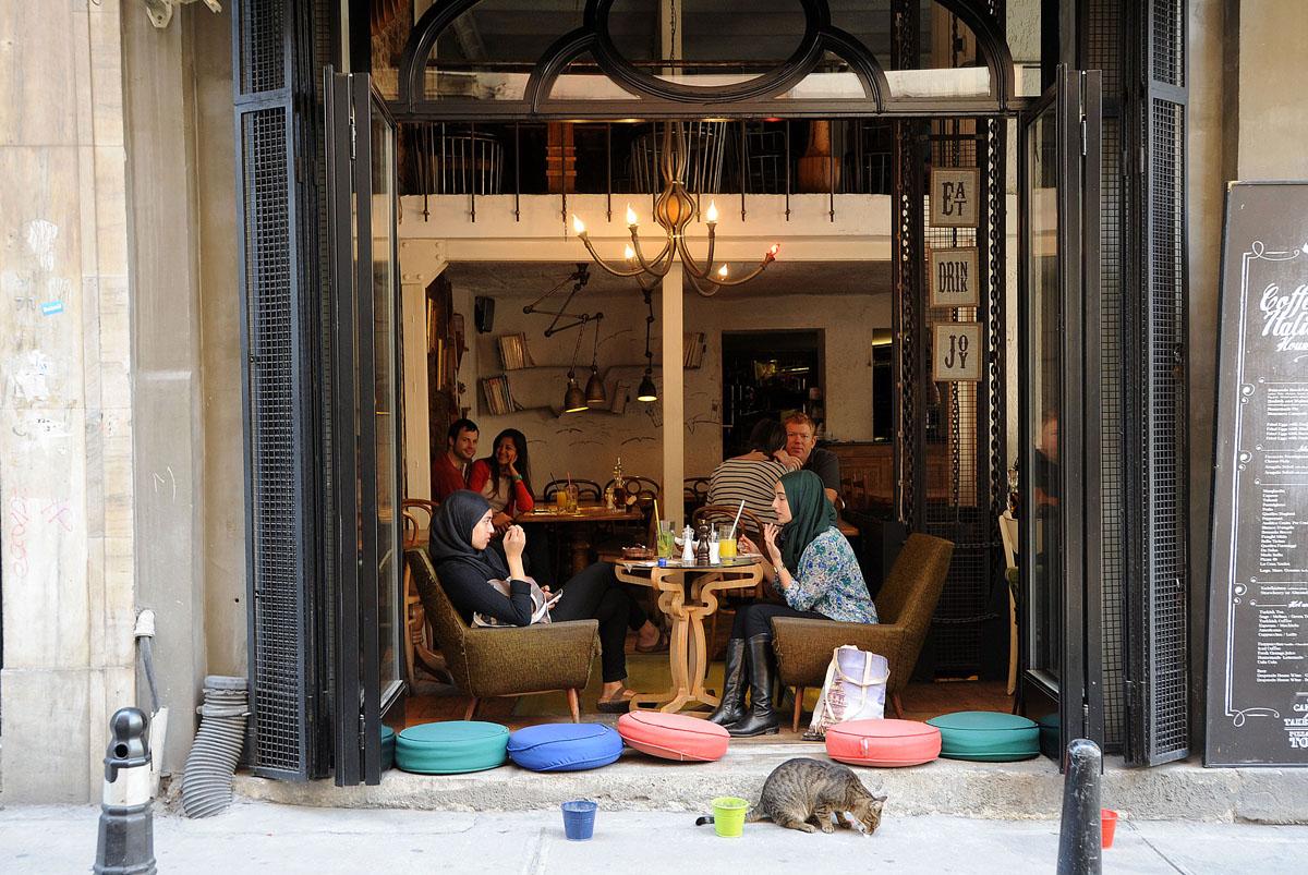 38. У многих домов стоят две мисочки: одна с кошачьей едой, одна с водой.