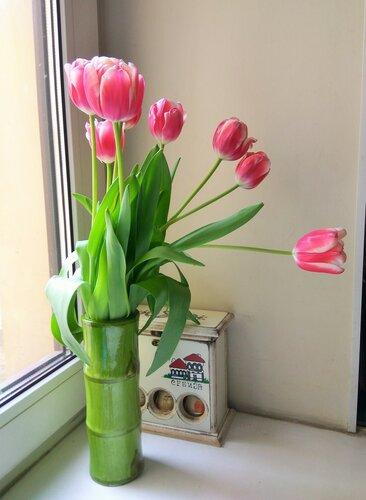 Тюльпаны В.jpg