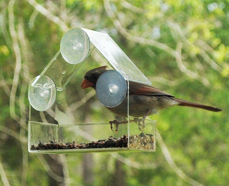 Кормушка для птиц на окно