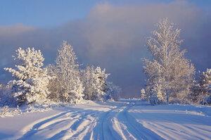 Сибирская зима.jpg