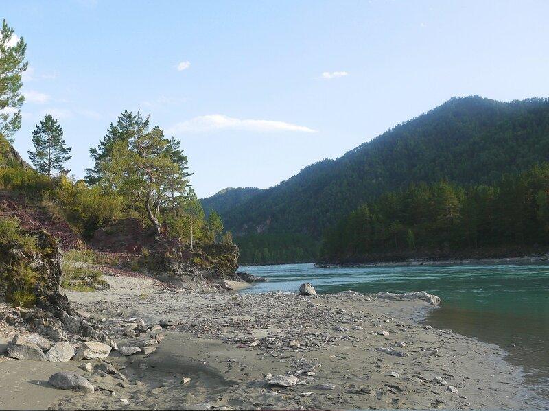 На реке Катунь. Алтай.jpg