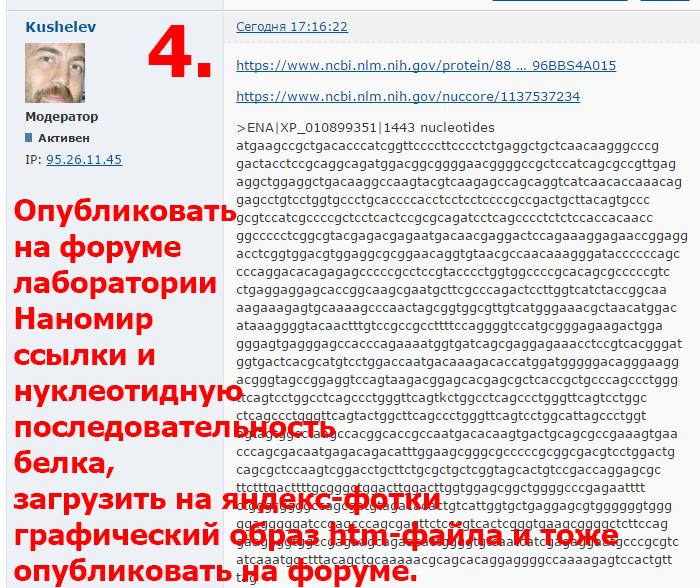 https://img-fotki.yandex.ru/get/194778/158289418.40d/0_17908e_4098250c_XL.png