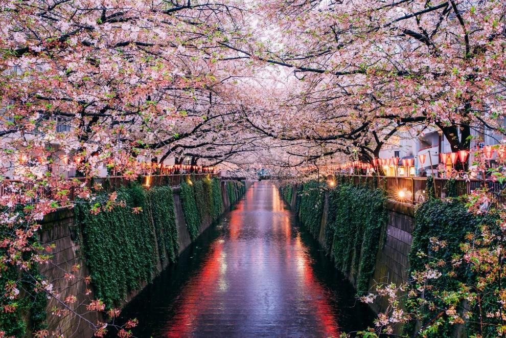 Замок в Осаке. Весной Япония становится одним из самых привлекательных туристических направлений мир